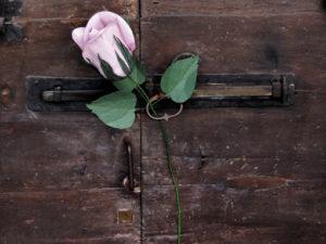 olg door with giant paper rose bud