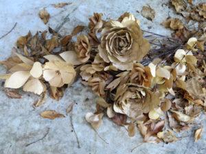 Paper Flower Stilleben